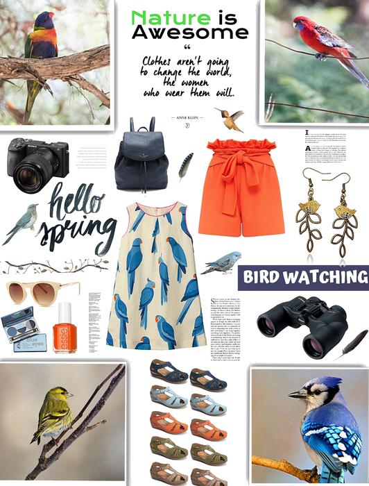 Spring Look/Bird Watching