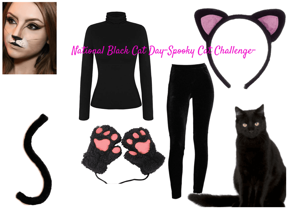 National Black Cat Day Spooky Cat Challenge