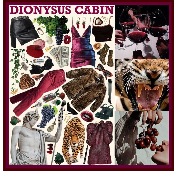 CAMP HALFBLOOD: Dionysus Cabin
