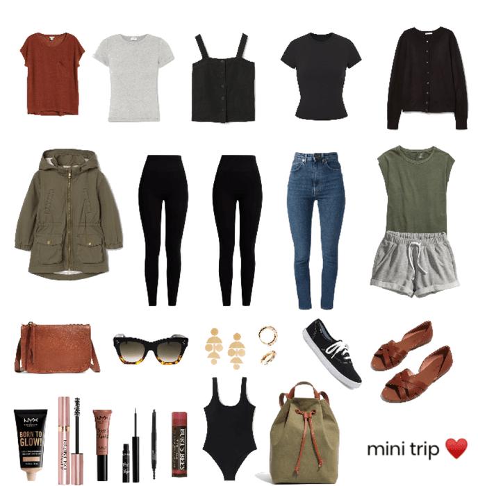mini trip