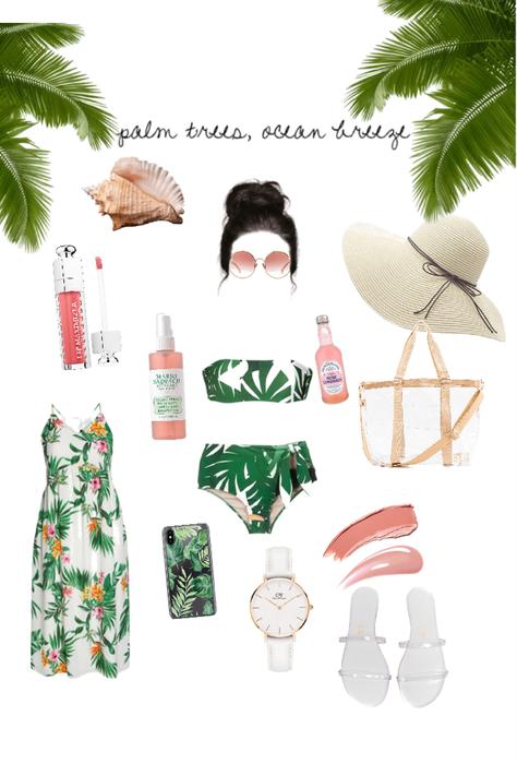 Palm tree beach day