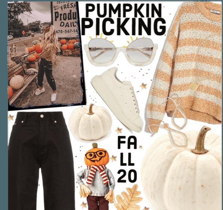 #pumpkin picking