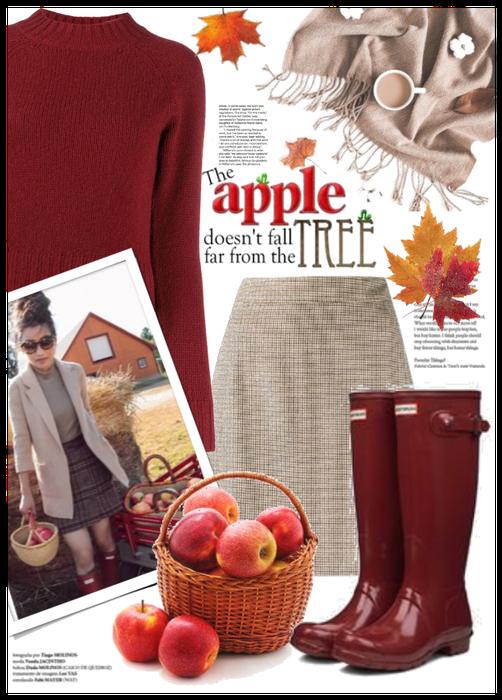 Fall apple picking 🍎🍎🍁