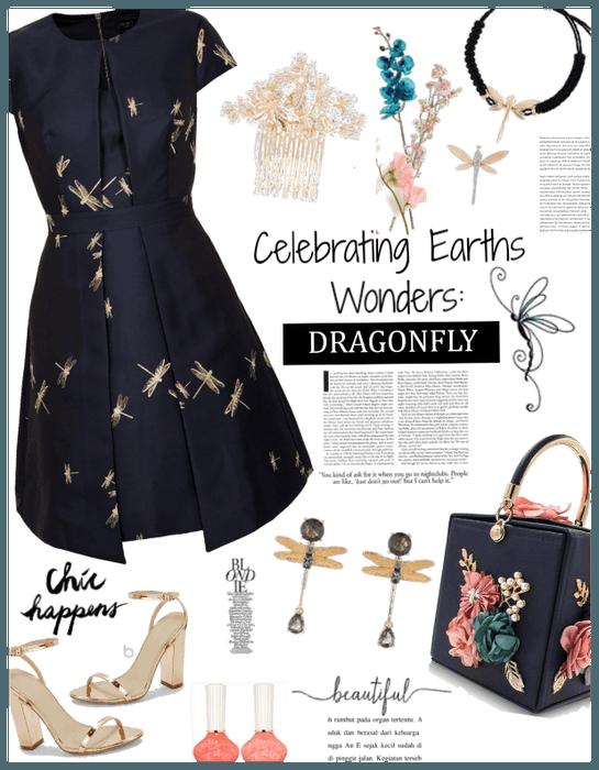 Celebrating earths wonders: Dragonfly