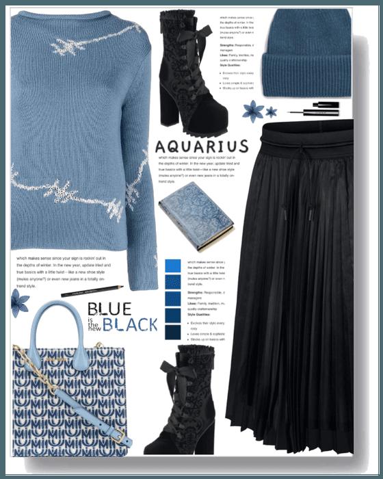 Aquarius: The Water Blarer
